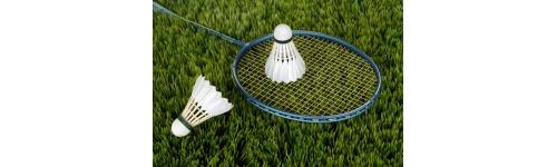 Badminton, Speedminton